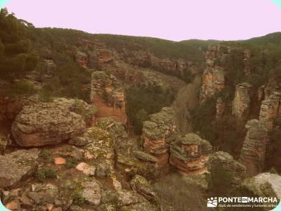 Hoces y cañones del Río Piedra y del Río Gallo -- Laguna Gallocanta - Rutas Senderismo;senderismo